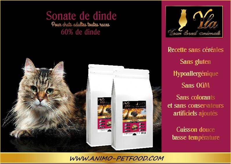 nourriture-sans-cereale-pour-chat