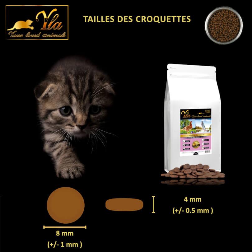 chaton-alimentation-hypoallergenique-sans-cereale