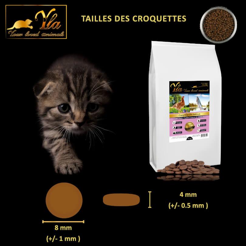 croquettes-sans-cereales-chaton