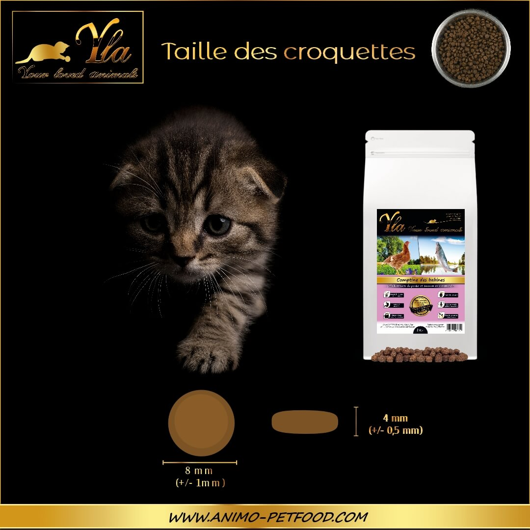 taille-croquettes-sans-cereales-chaton