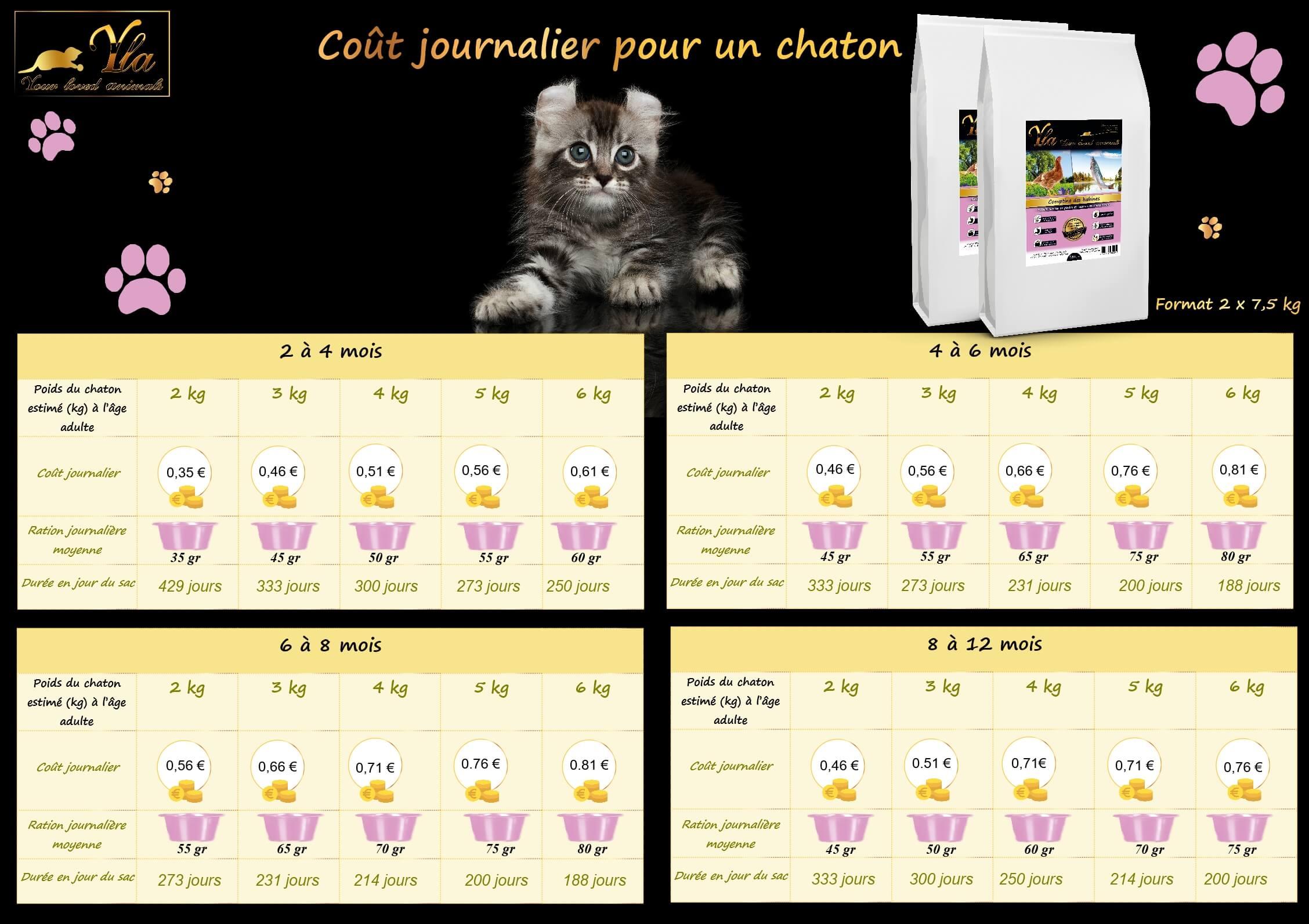 cout-journalier-alimentation-sans-cereale-chaton