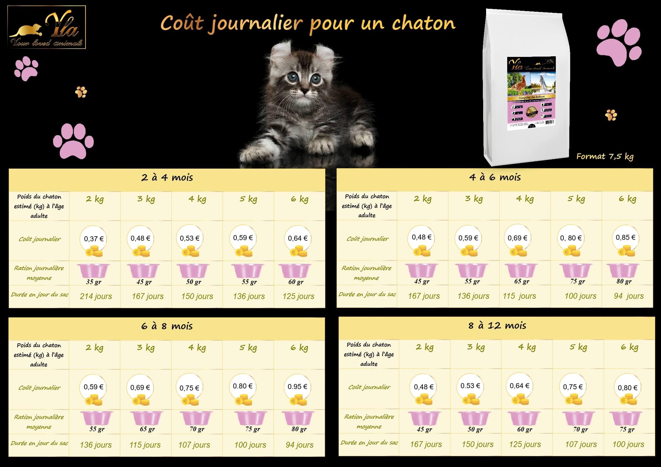 cout-journalier-croquettes-sans-cereale-chaton