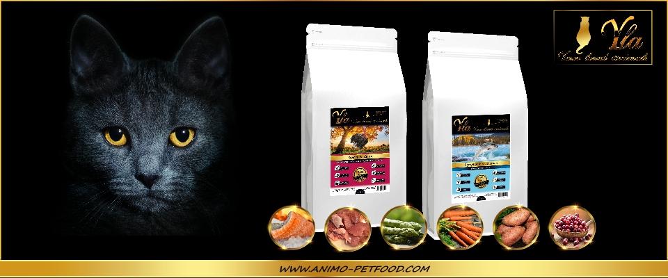 aliments-sans-cereales-pour-chat-saumon-dinde