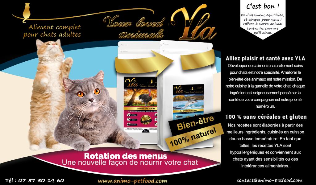 menu-gastronomique-sans-cereale-ni-gluten-pour-chat