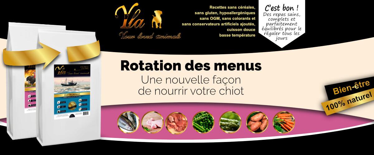 nourriture-sans-cereales-ni-gluten-pour-chiot
