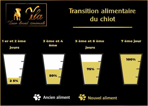 transition-alimentaire-du-chiot