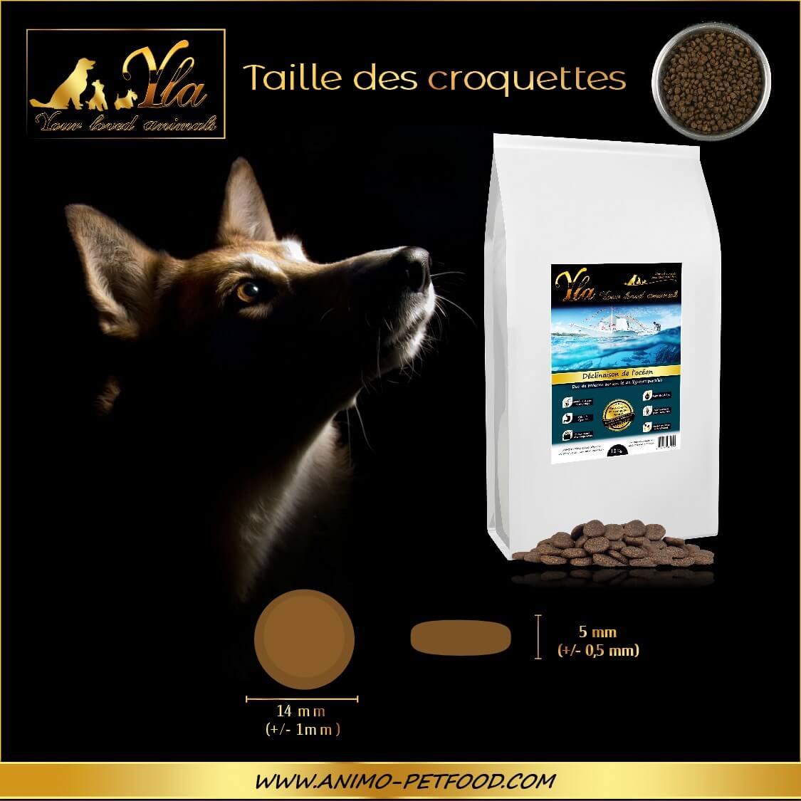 alimentation-hypoallergenique-chien-avec-peau-et-digestion-sensible