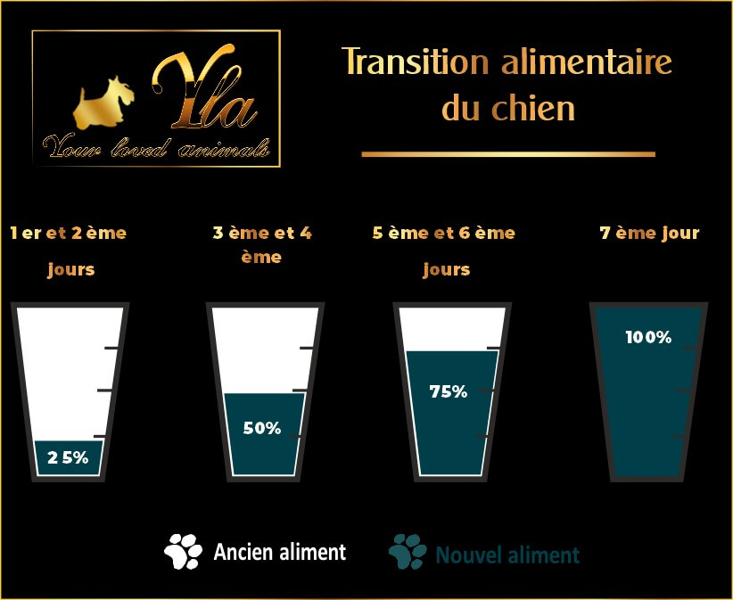 petits-chiens-transition-alimentaire