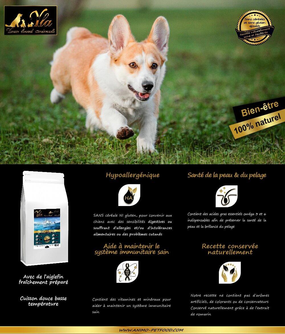 aliment-petit-chien-sans-cereale-ni-gluten