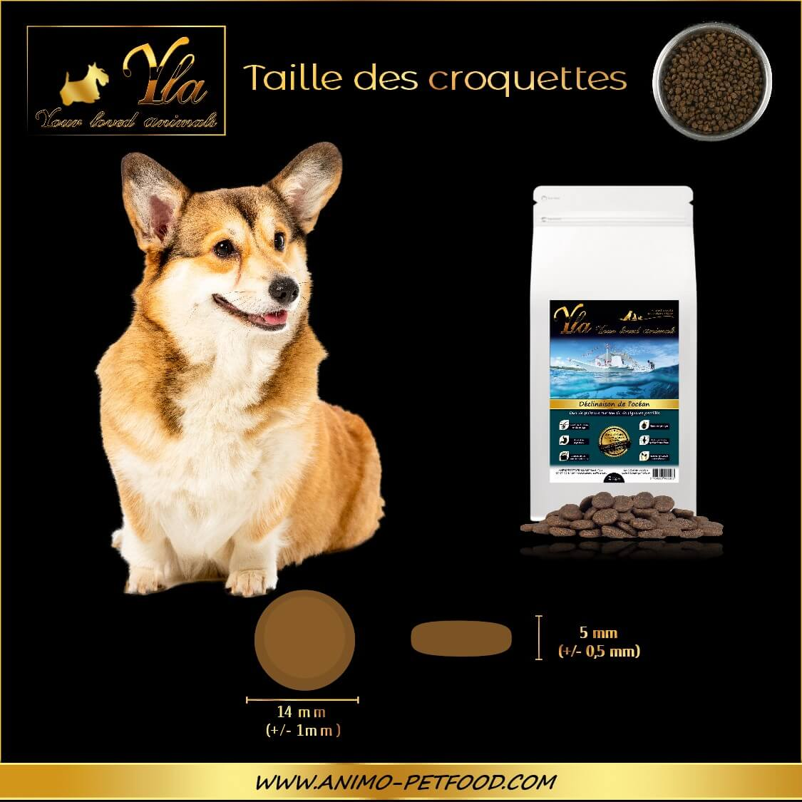 croquette-hypoallergenique-petit-chien