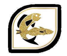 croquettes sans céréales pour chien aiglefin et saumon