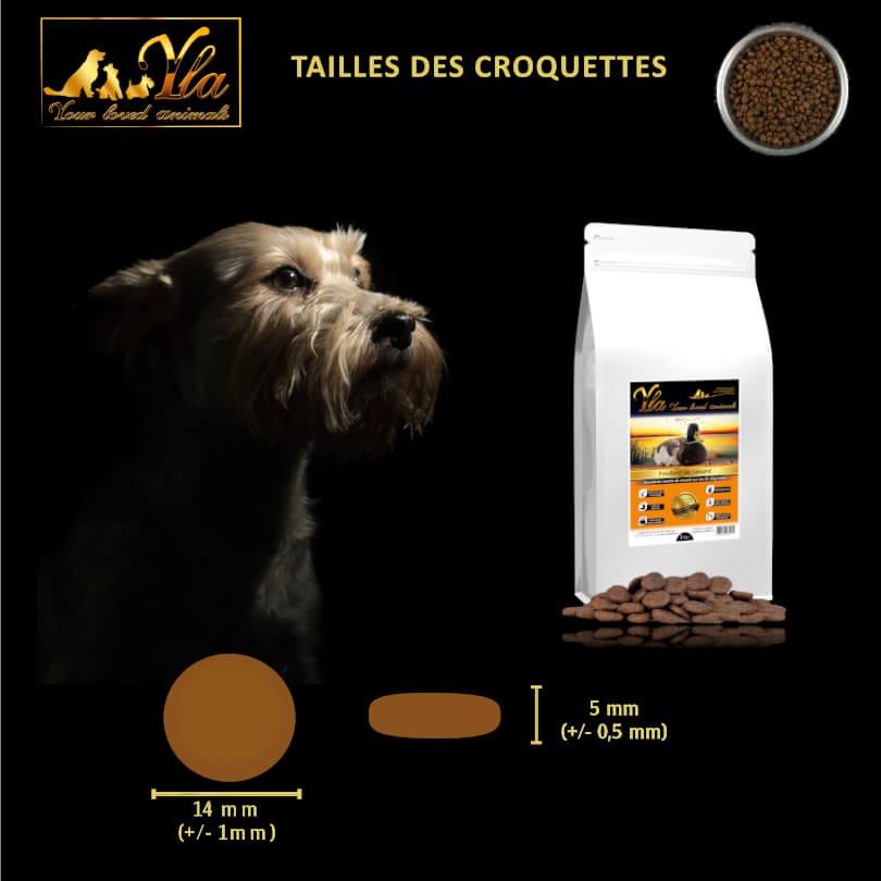 croquette-sans-cereales-chien-au-canard
