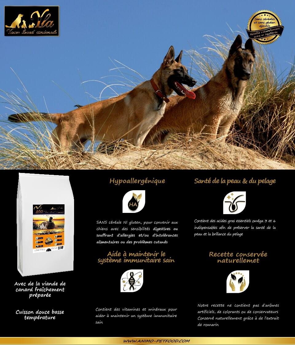 croquettes-sans-cereale-hypoallergeniques-chiens-grande-race-au-canard