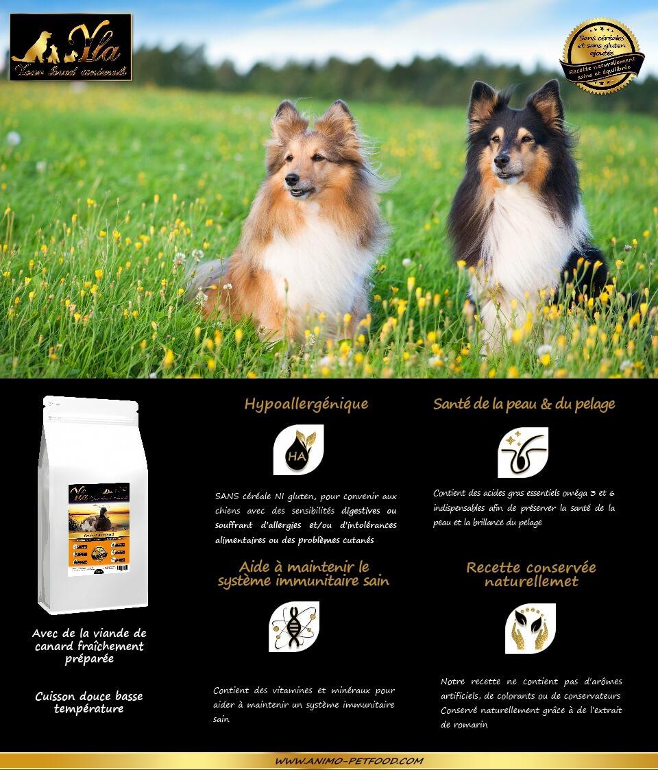 canard-sans-cereales-hypoallergenique-super-premium-croquettes-chien
