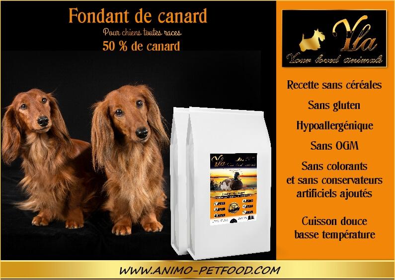 croquette-sans-cereales-pour-chien