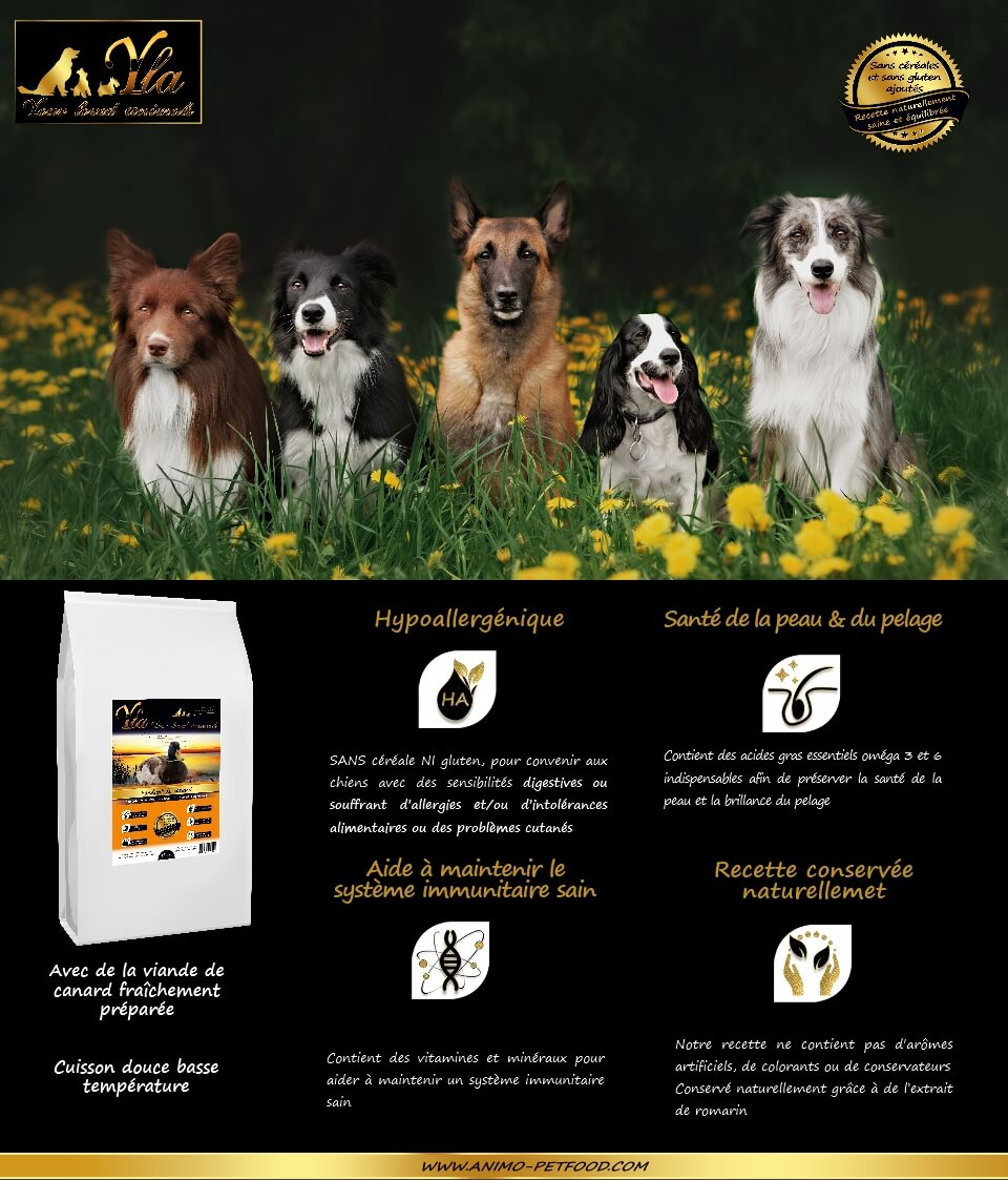 croquettes-super-premium-chiens-sans-cereales-ni-gluten-au-canard