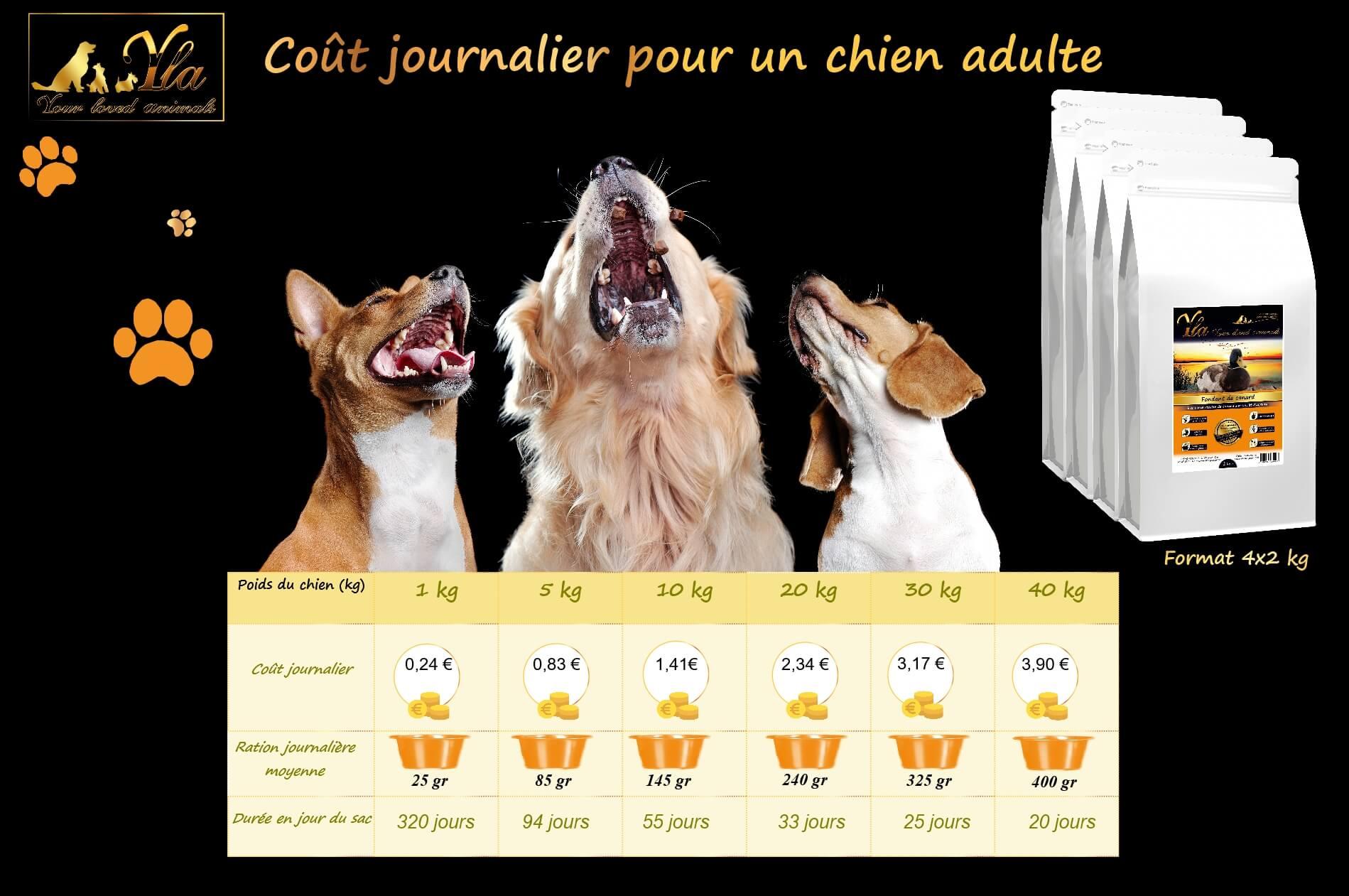 coût-alimentation-chien
