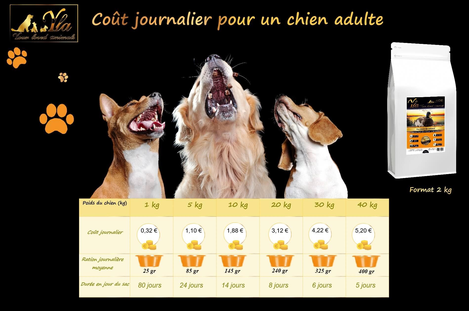 coût-chien-alimentation