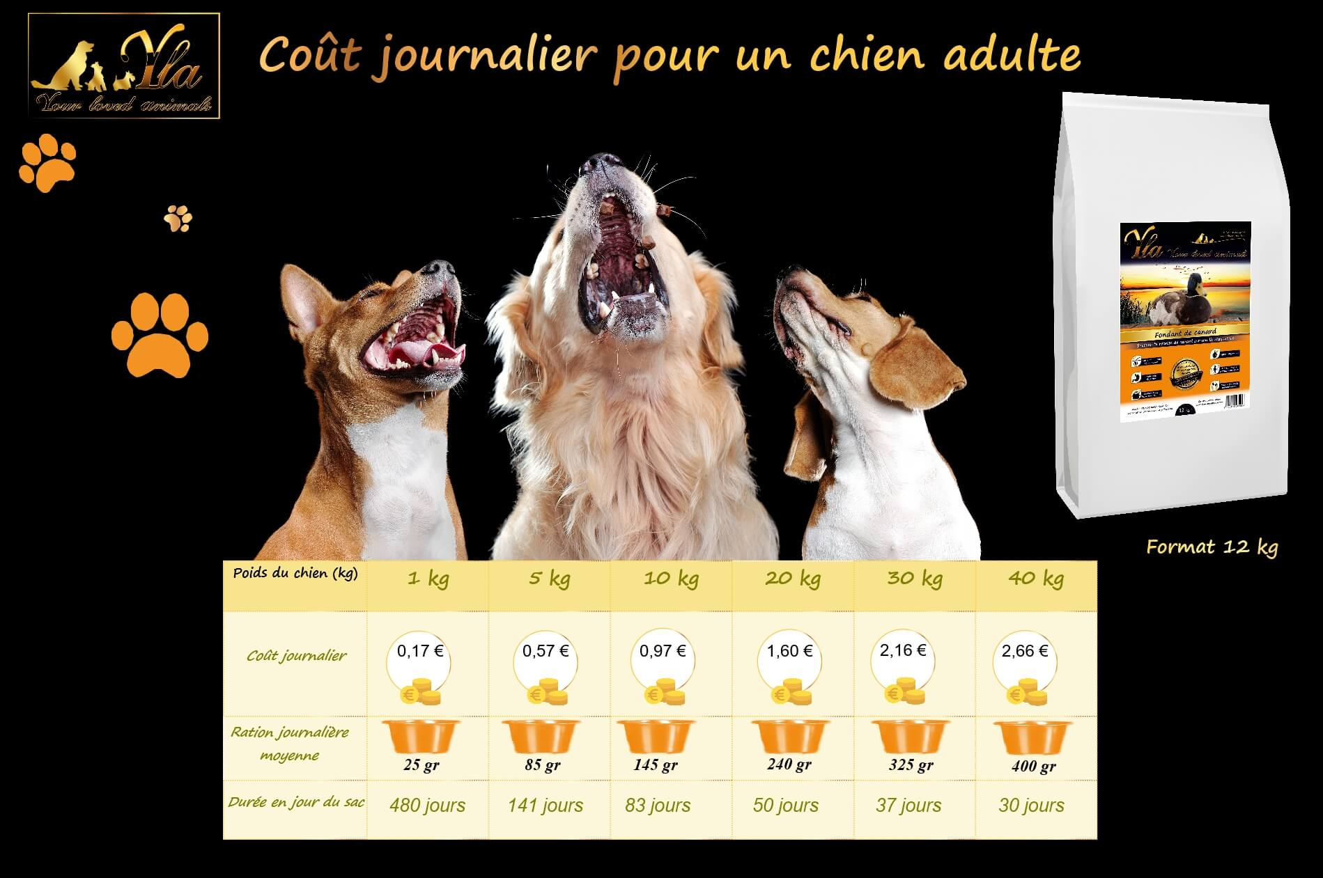 coût-croquettes-chien