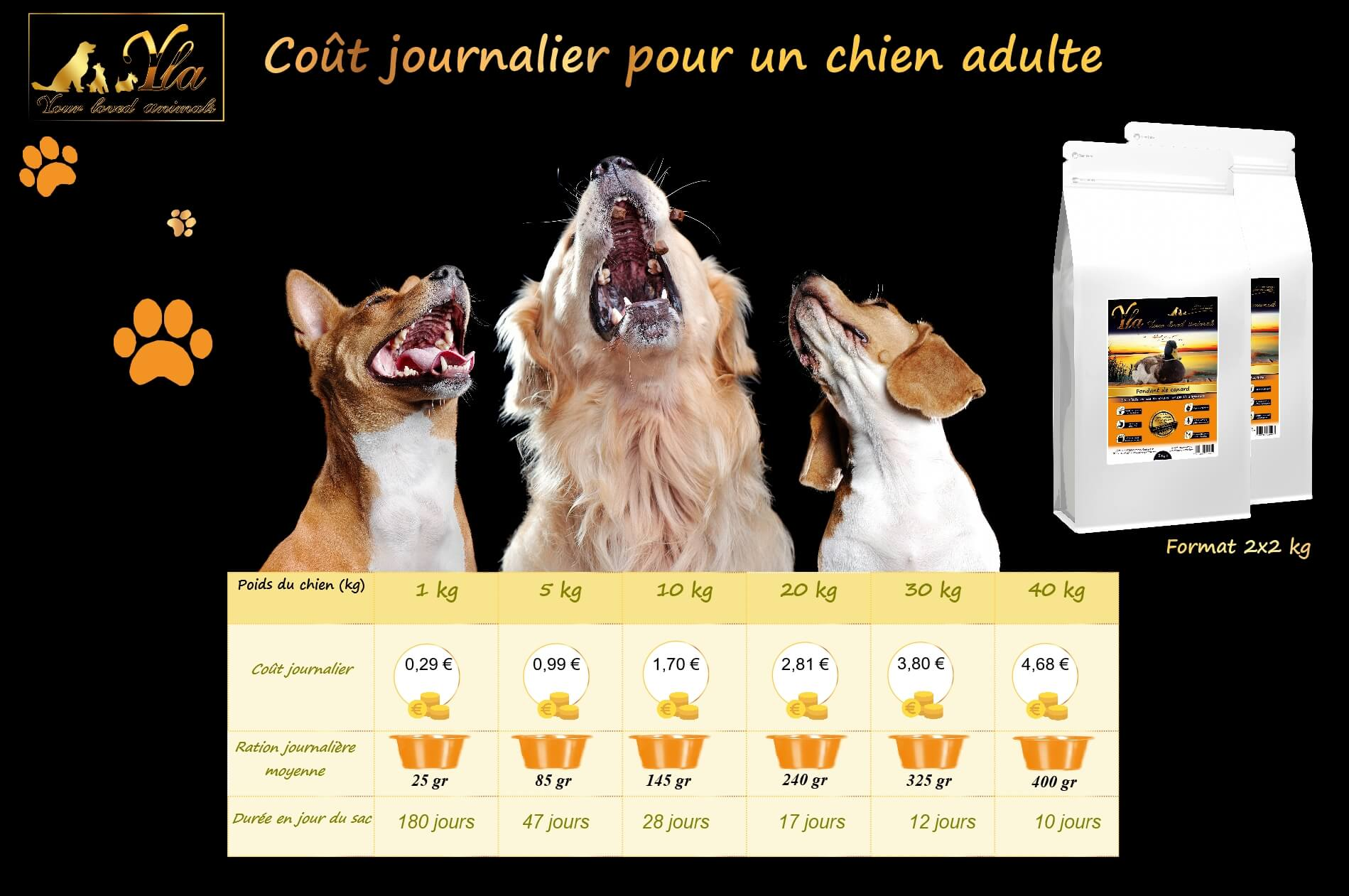cout-journalier-alimentation-chien