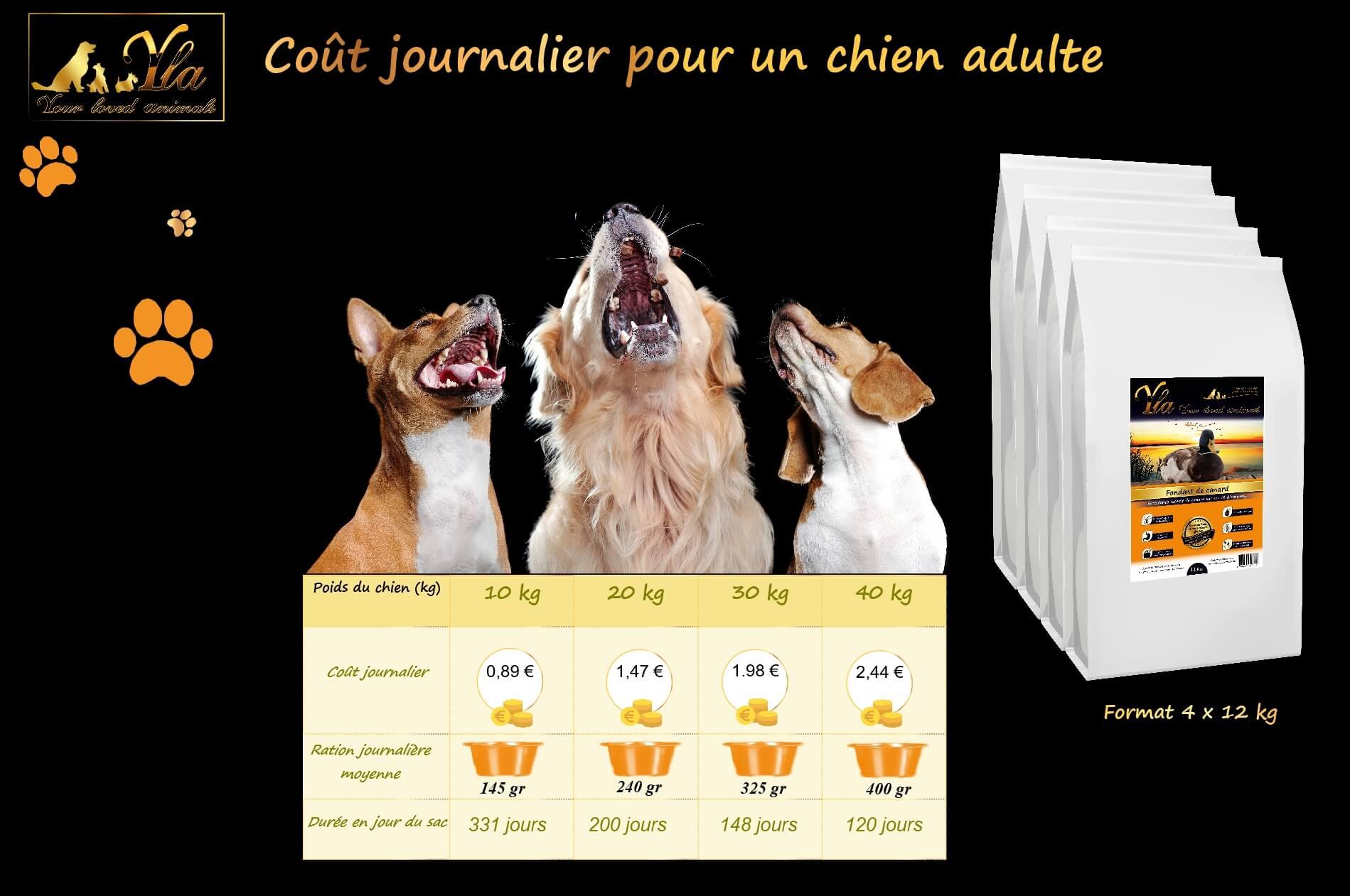 cout-journalier-croquette-chien