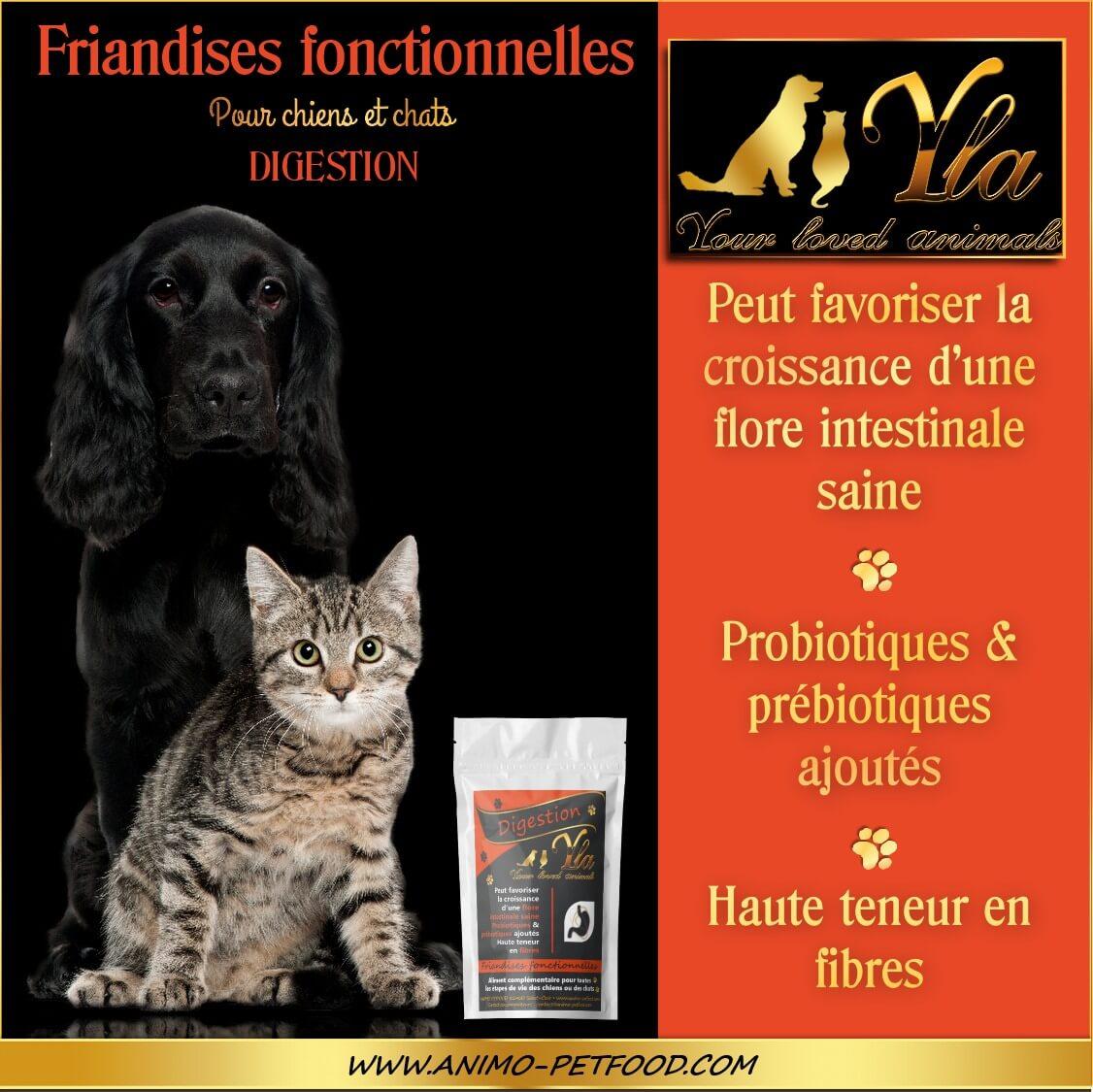 friandise-pour-chien-chat-digestion
