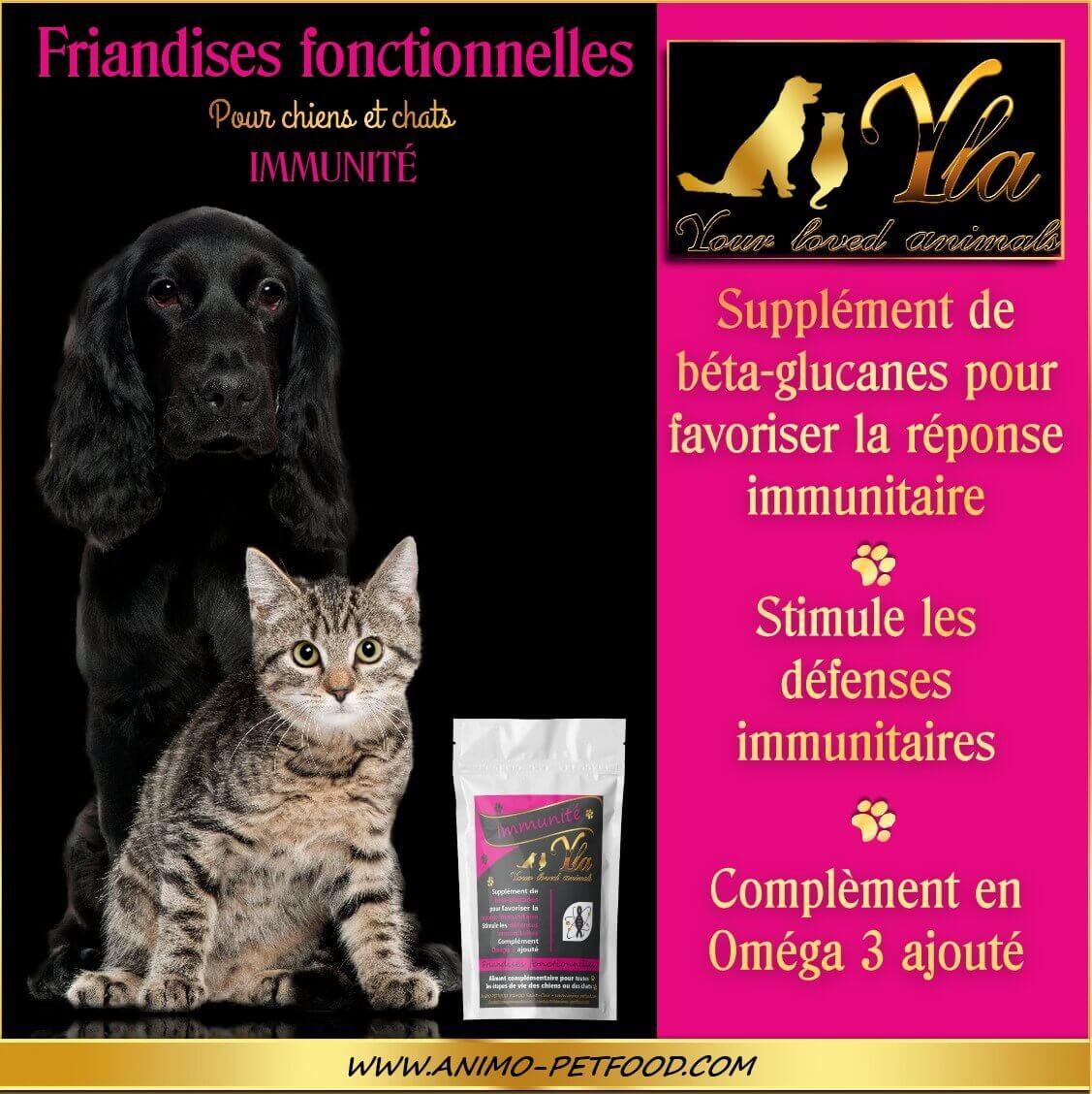friandises-immunitaire-sans-cereales-chien-chat