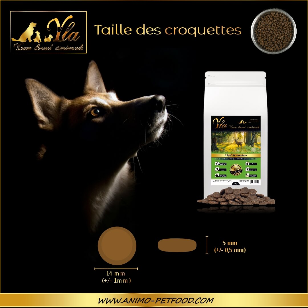 croquettes-sans-cereales-chien-adulte-toutes-races-taille croquettes