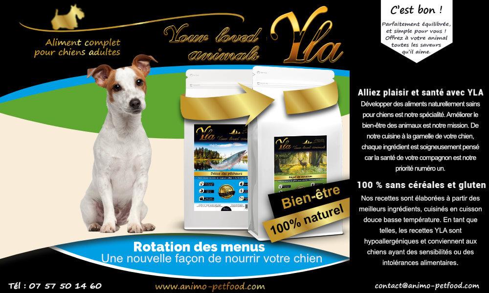 nourriture-sensibilite-cutanee-et-digestive-petits-chiens