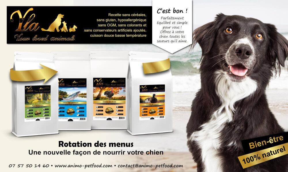 alimentation-hypoallergenique-pour-chien-avec-allergies-et-intolerances-alimentaires