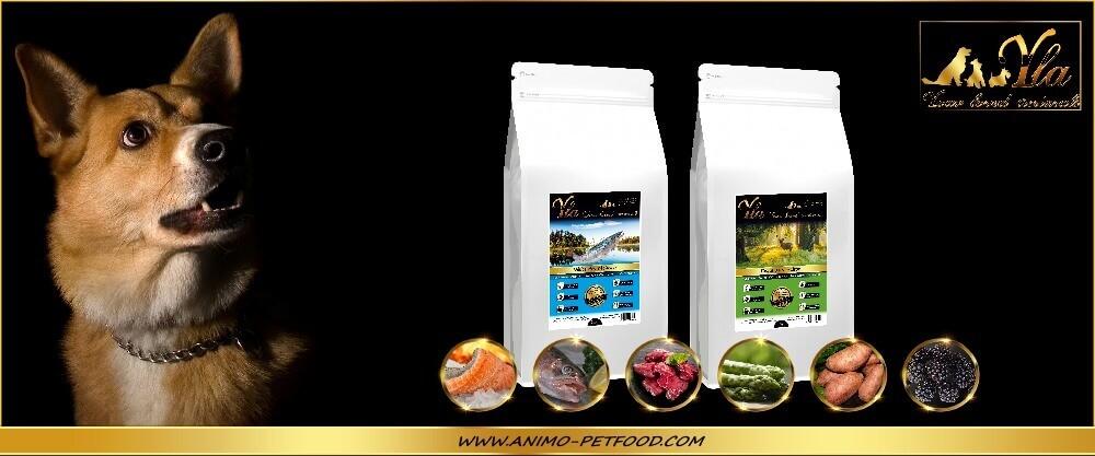 aliments-sans-cereales-ni-gluten-hypoallergeniques-chien-sensible
