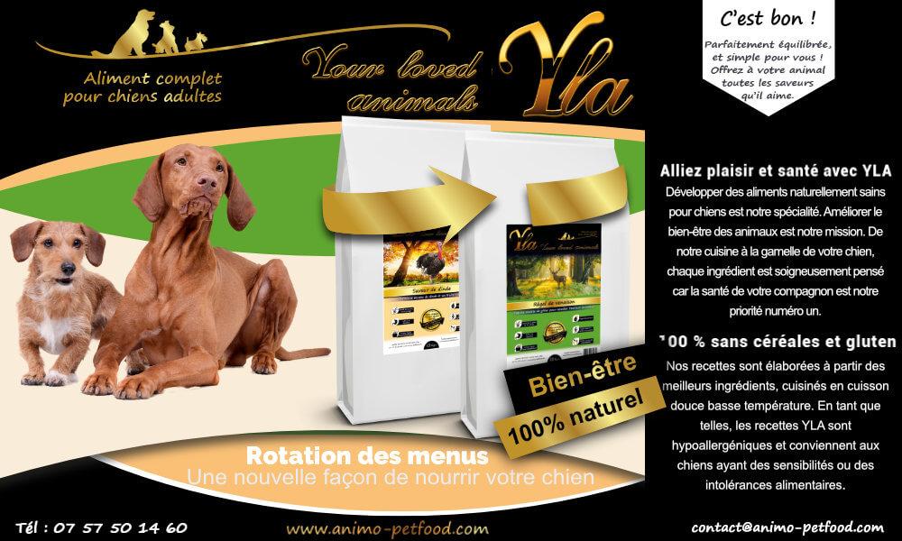 croquette-chiens-souffrant-de-troubles-digestifs-et-probleme-de-peau
