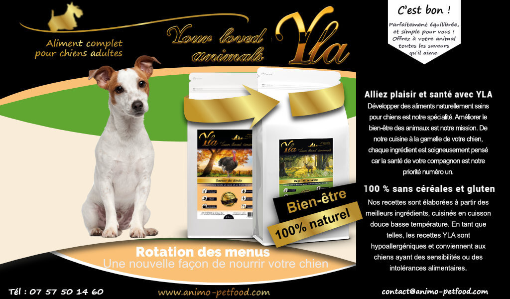 nourriture-speciale-intolerance-et-hypersensibilite-alimentaire-pour-chien