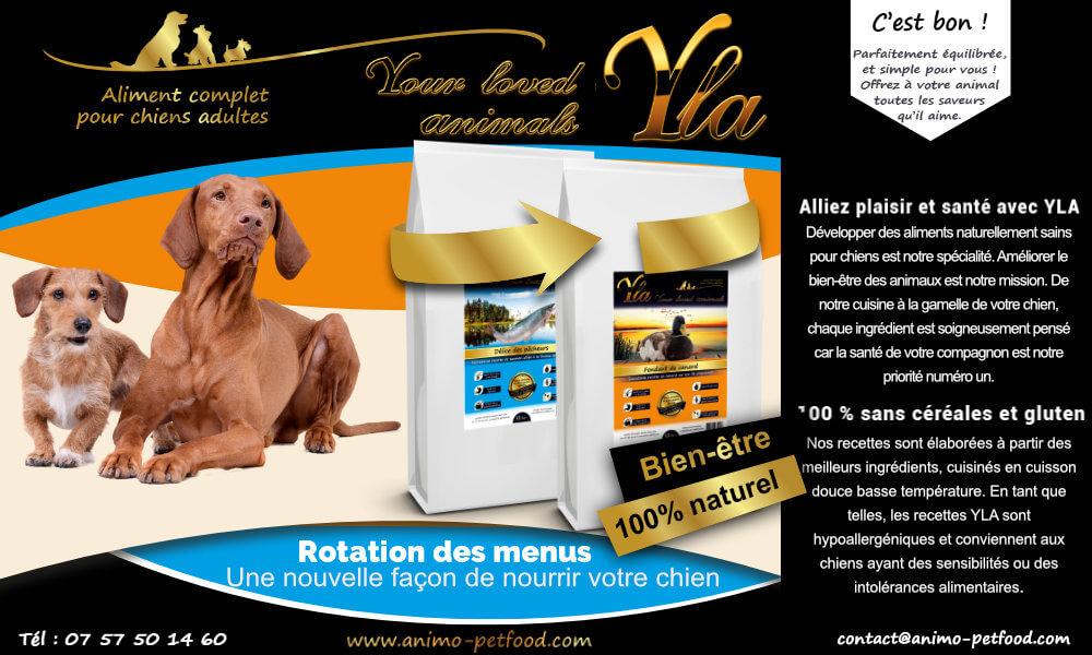 chien-avec-probleme-de-digestion-et-de-peau-aliments-hypoallergeniques