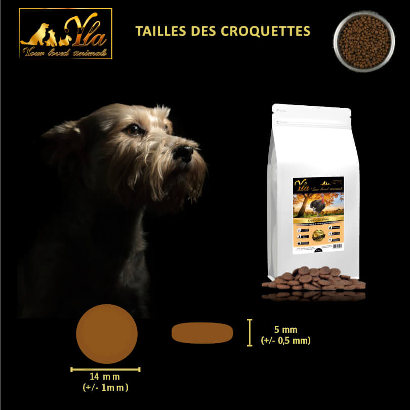 croquettes-sans-cereales-chien-a-la-dinde