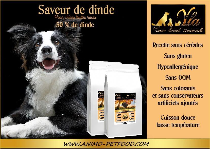 aliment-pour-chien-sensible