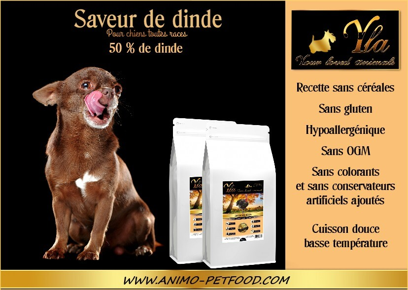 aliment-pour-petit-chien-avec-troubles-digestifs