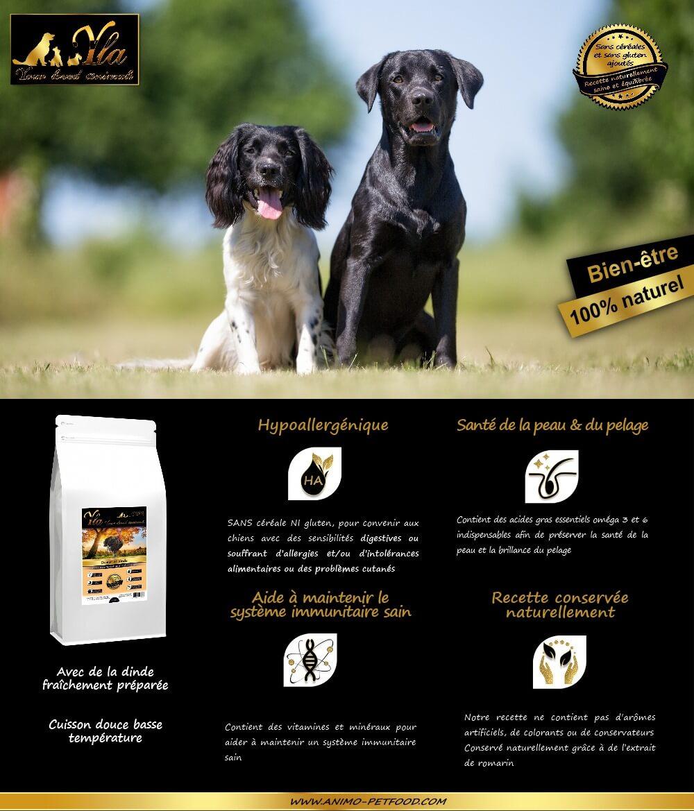 croquettes-sans-cereale-sans-gluten-hypoallergeniques-chiens-dindeniques-chiens-dinde
