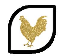 croquette-au-poulet-pour-chien