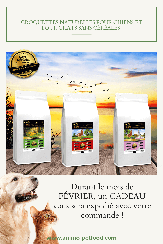 croquettes-naturelles-pour-chiens-pour-chats-sans-cereales
