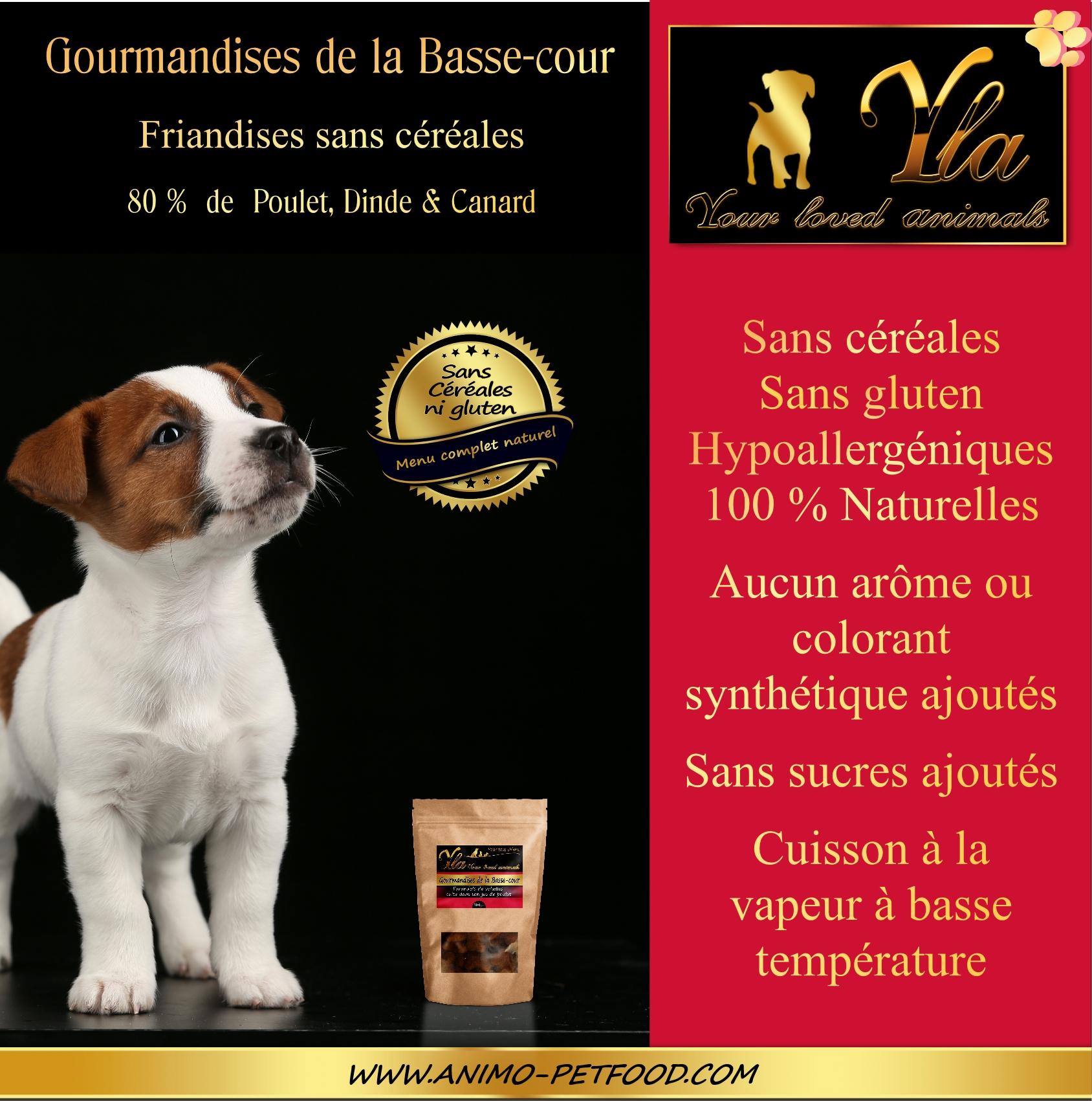 friandises sans céréales pour chien-friandises naturelles pour chiot