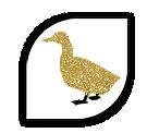 croquettes sans céréale au canard