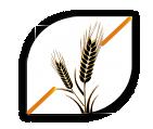 FRIANDISES FONCTIONNELLES  PEAU ET PELAGE -sans céréales-chien-chat-grain free