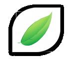 FRIANDISES FONCTIONNELLES DENTAIRE -chien-chat-Extraits naturels de thé vert