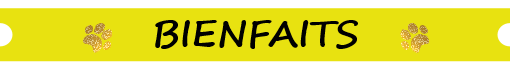FRIANDISES FONCTIONNELLES RELAXATION-chien-chat-friandises naturelles-