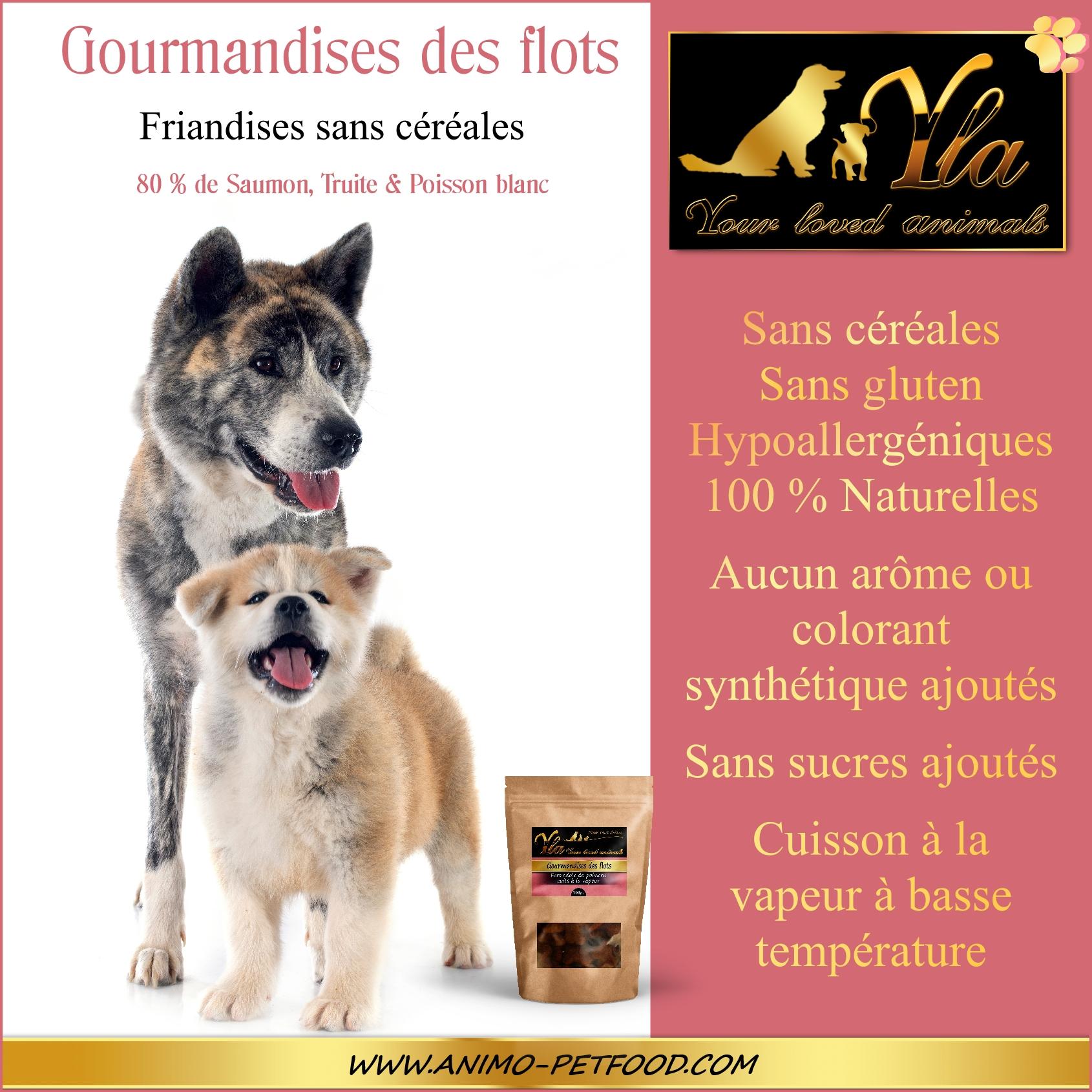 friandise pour chien sans céréale
