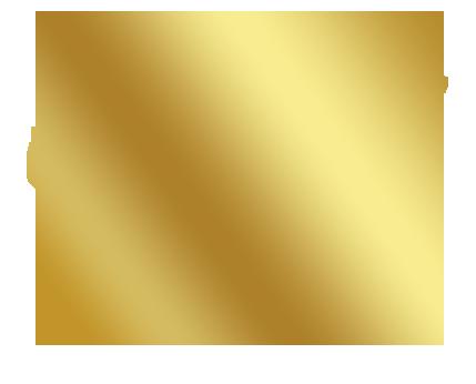 Croquette naturelle sans céréales pour chien à la dinde