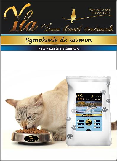 les diff rences entre les aliments pour chats et les aliments pour chiens. Black Bedroom Furniture Sets. Home Design Ideas